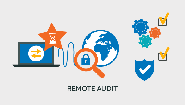 remote IT security audit